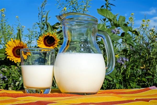 美国一公司利用酵母菌生产出人造奶