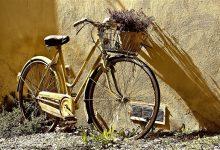 一男子导致公共自行车丢失遭起诉索赔25500元 网友热议-微世界